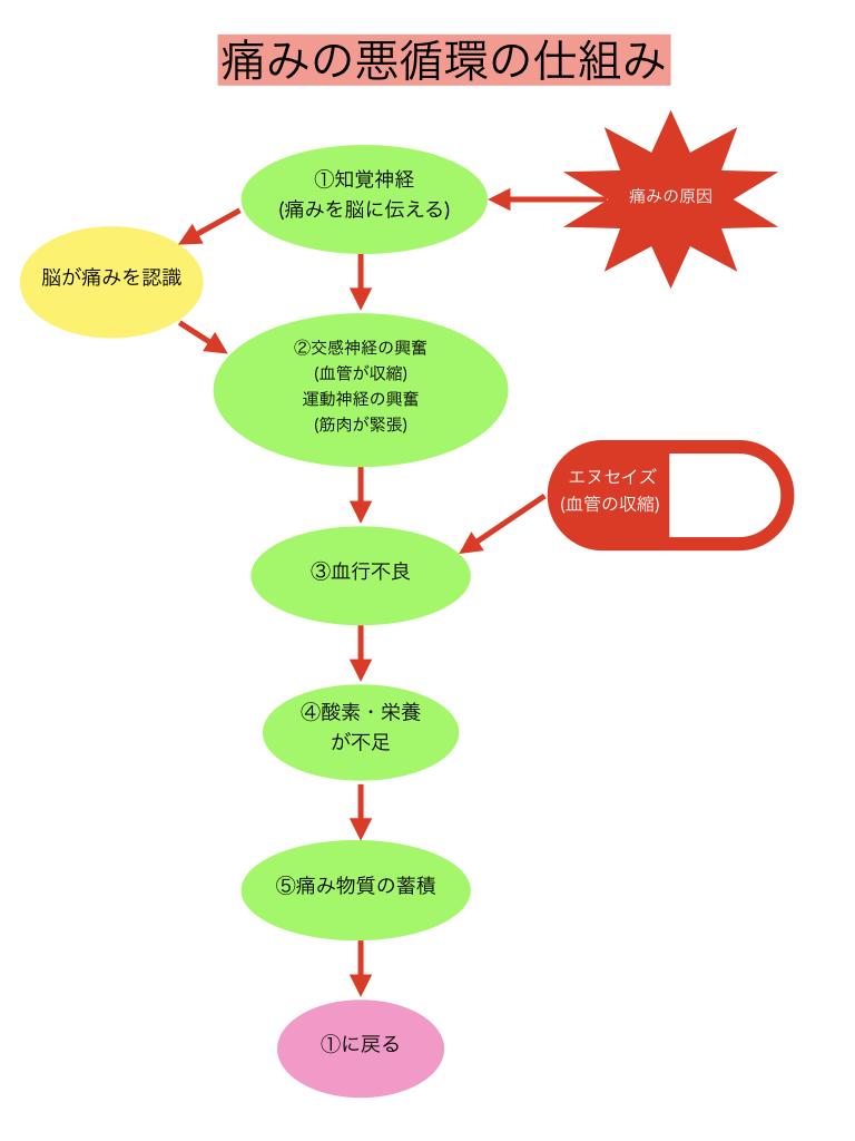 痛みの悪循環3