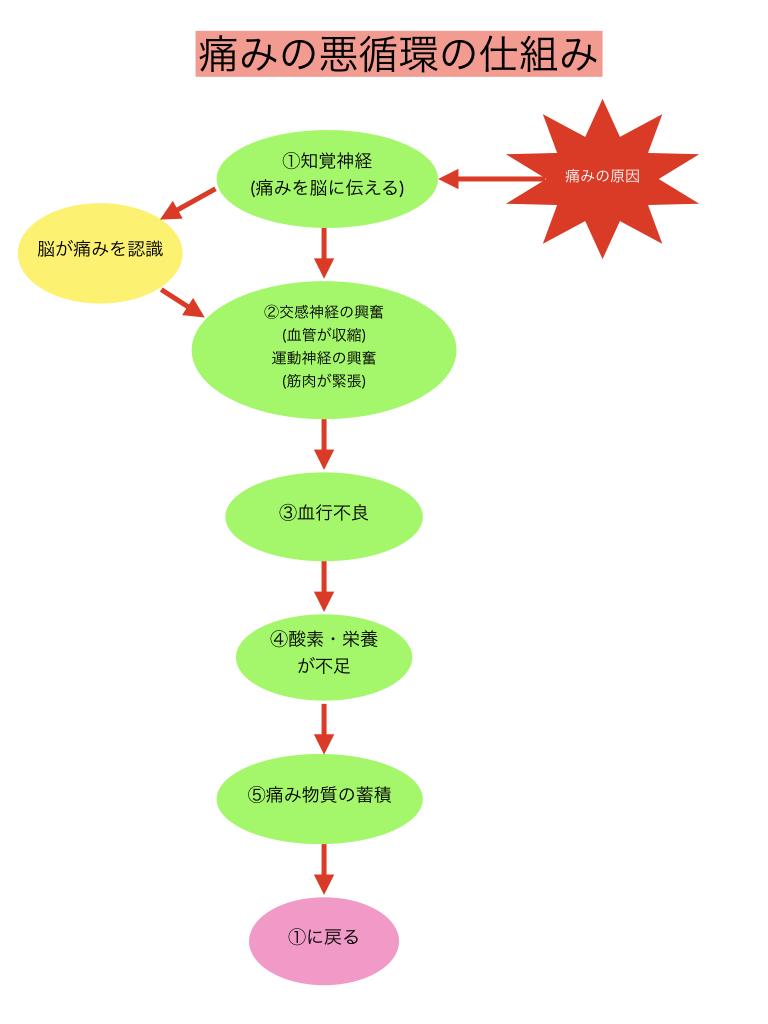 痛みの悪循環1