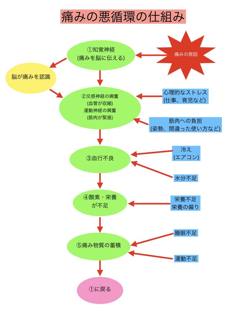 痛みの悪循環2