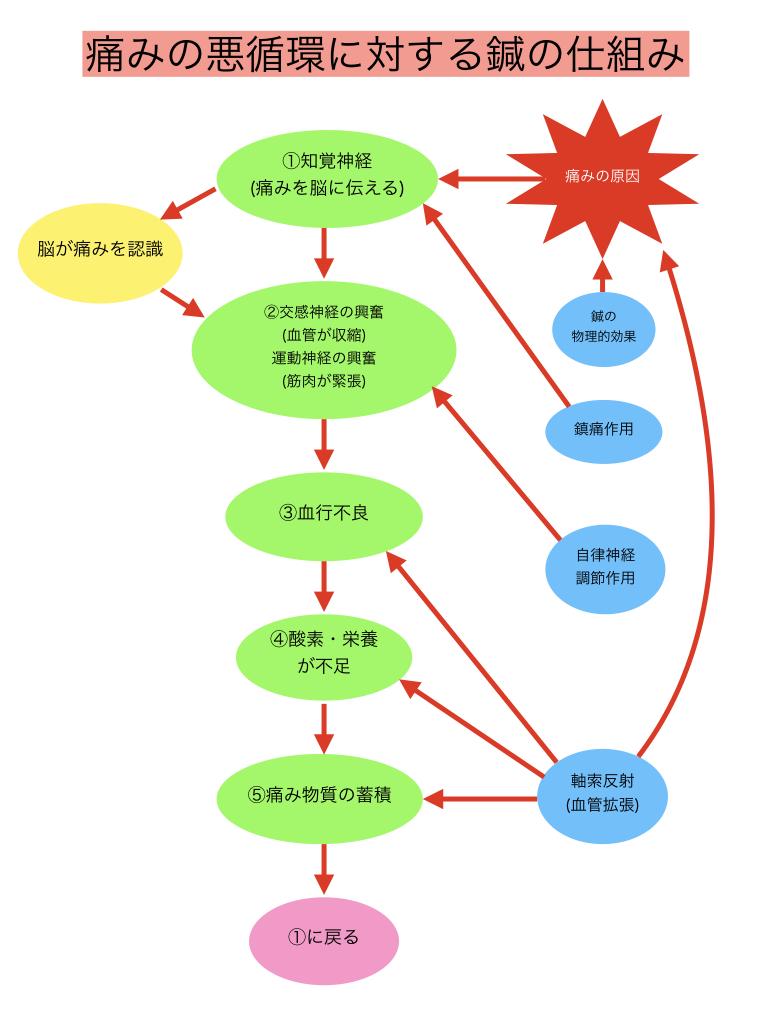 痛みの悪循環4