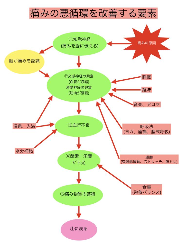 痛みの悪循環6