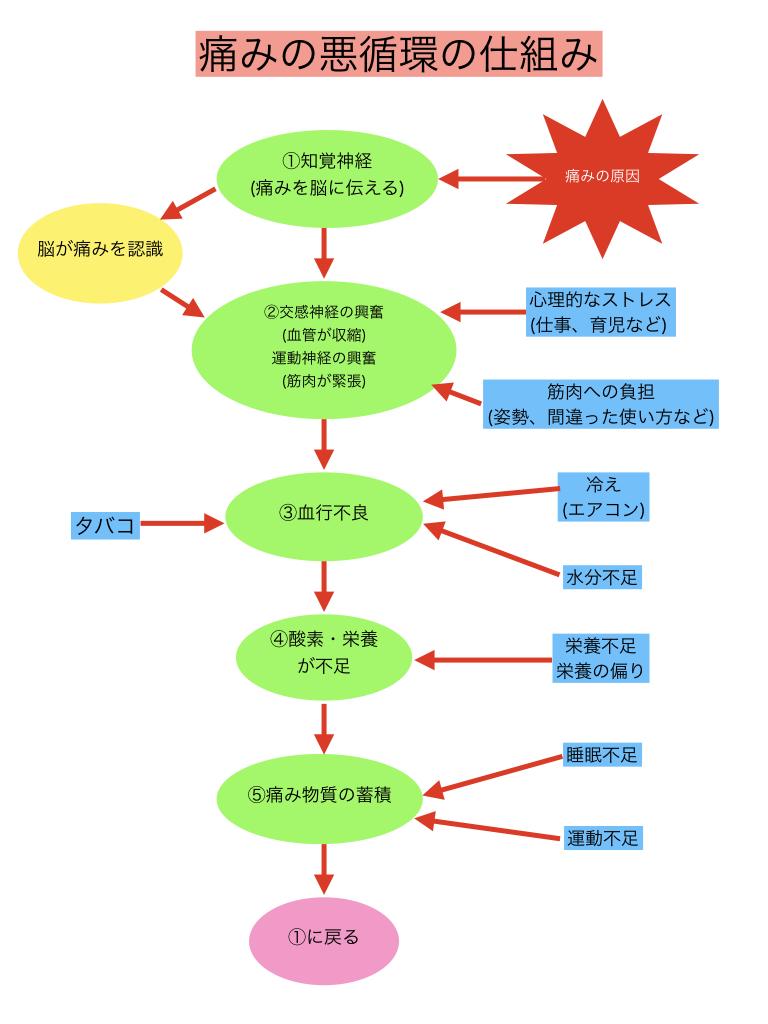 痛みの悪循環5