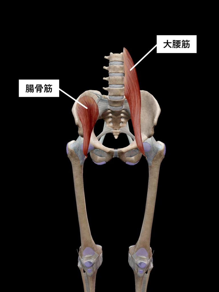 ストレッチ筋肉5
