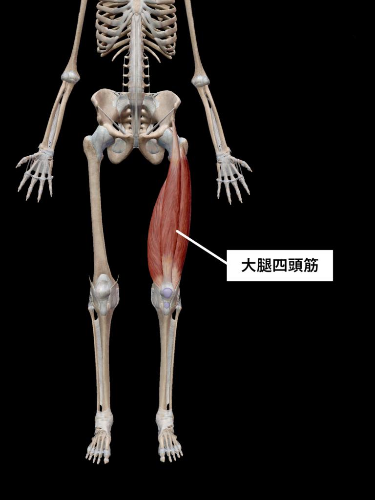 ストレッチ筋肉6